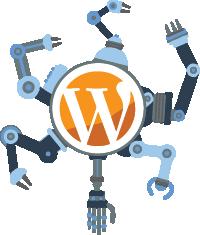 Expertos en WordPress - Castellón